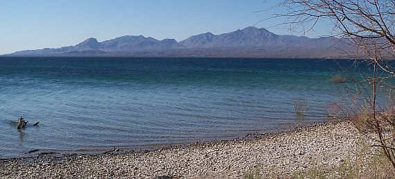 Cottonwood road at lake mead national recreation area for Lake mohave fishing