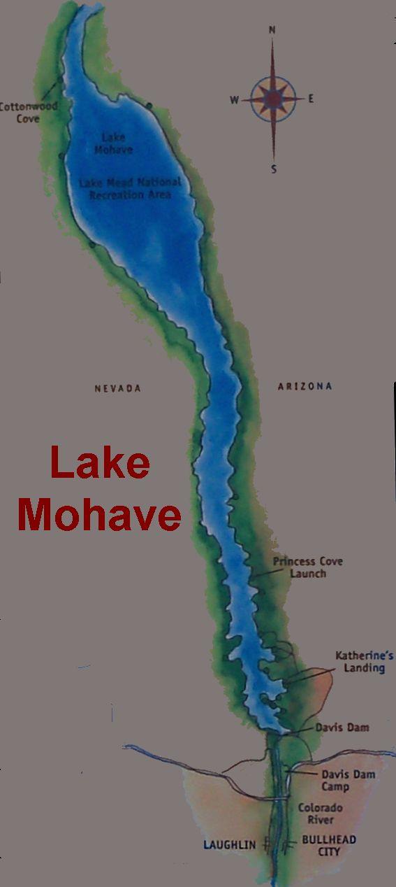 Davis dam on lake mohave at bullhead city for Lake mohave fishing